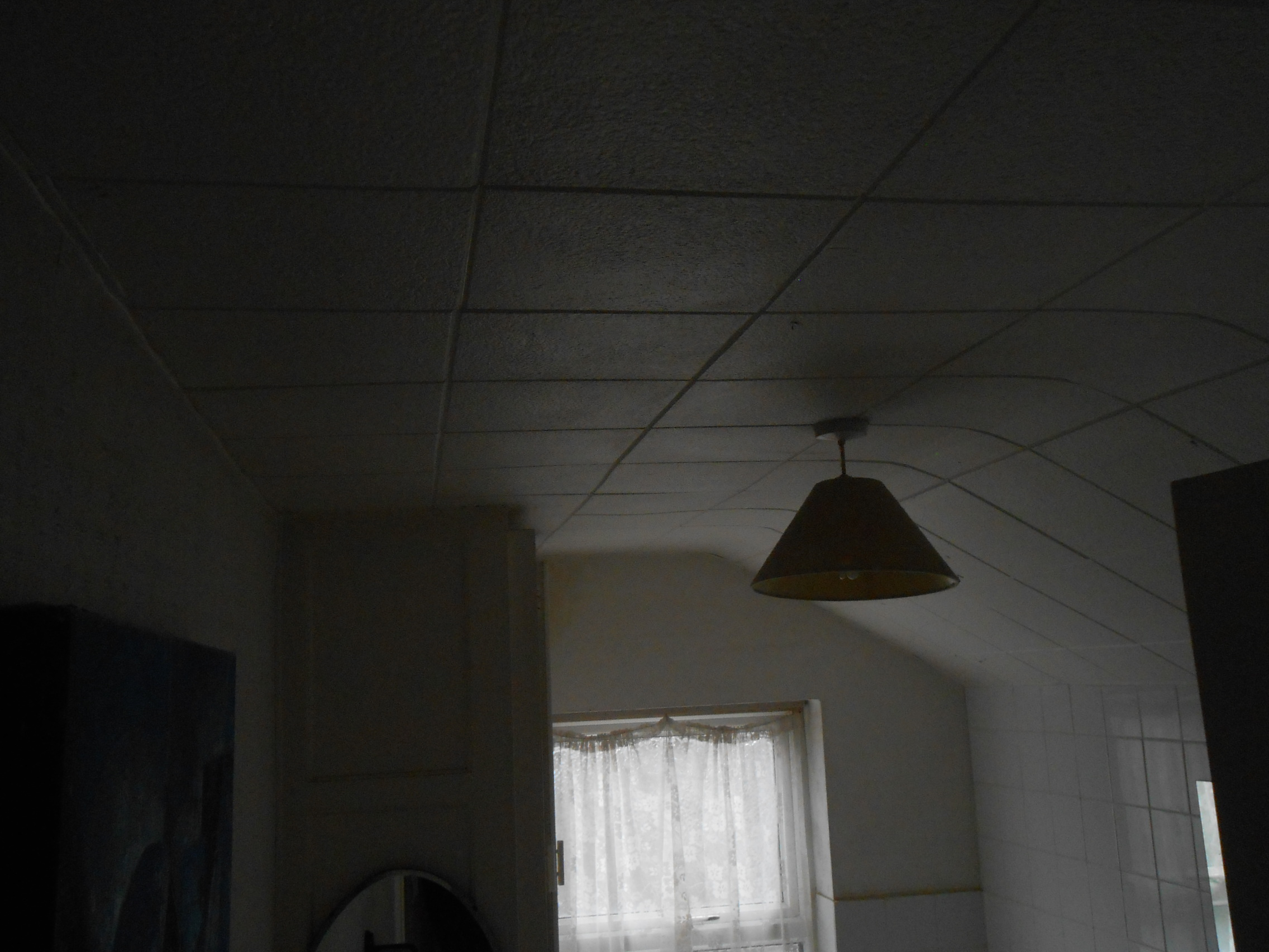 Shire surveyors building surveys leicester and northampton polystyrene ceiling tiles dailygadgetfo Image collections